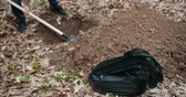 Bloody Murderer Is Digging A Grave For The Victim. The Guy Digs A Hole In The Woods. Criminal Concept. A Man Wants To Bury Stolen Things In The Woods. Close Up.. Prores, Slow Motion
