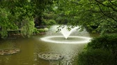 누각 : A beautiful fountain shakes water from the lake in a botanical garden, around beautiful trees, plants, flowers. Wide angle, prores, slow motion