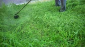 snoeien : a man gardener in gray pants, mows tall green grass along the pavement with a gasoline mower, in the afternoon, cut plants on the lawn fly in different directions and fall into the camera, close-up Stockvideo