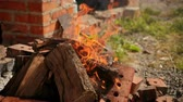 ziegel : bright burning wood, around pieces of brick, very good flame, orange, Sunny weather day, slow shooting, close-up
