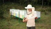 imkerei : man beekeeper in special clothes, holding a smoker to calm the bees