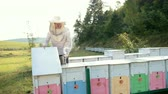 imkerei : beekeeper, opens the hive, holding smoker to calm bees, a lot of smoke