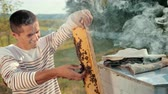 imkerei : man beekeeper checks honeycomb and collects bees by hand