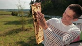 ハイブ : man beekeeper checks honeycomb and collects bees by hand