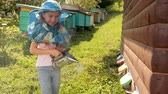 ハイブ : little girl in special clothes for beekeeping, holding a smoker to calm the bees