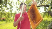 melado : beekeeper cuts wax from honeycomb frame with a special electrik knife Stock Footage