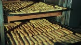 broden : Female hands of baker push tray with long pastry baked sticks back in rack as shelf. Crispbead lies in rows, seasoned, sprinkled with cumin, caraway. Stockvideo