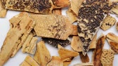 yaprak döken : Chinese herb medicine of Trionycis Carapax or Turtle Carapace Stok Video