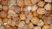 scallops : top view scallop pause and rotating Stock Footage