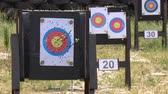 Arrow hits target at archery field 動画素材