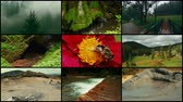 requintado : A 4k video wall (3x3x3) with Romanian nature shots, including the Bigar Waterfalls and Mud Volcanoes in Buzau Stock Footage