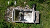 лес : Revealing destroyed old house in the middle of forest, aerial view