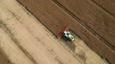 Combine harvester collecting grain on wheat field, aerial view of harvest