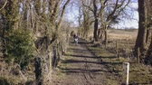 lamacento : Girl slowly rides through muddy dirt track. Baker Path, Tarvin, Cheshire, England