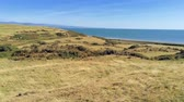 ovelha : tilt up move. Panorama of dry grass fields, beach and sea in Wales Vídeos
