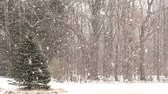wintertime : Heavy Snowfall with Large Snowflakes. Slow Motion.