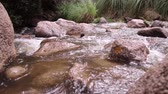 уборная : Clear water of Colorado River flowing through rocks in Cafayate, North of Argentina. Стоковые видеозаписи