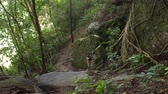 White man climbing up the rocks in jungles Stock Footage