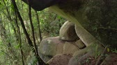 White man climbing up rocks in jungles Stock Footage