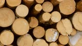 istif : Stack of logs on snow