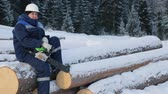 lumbering : Worker sitting on pile of logs in the forest Stock Footage