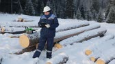 log : Worker with tablet near pile of logs in the forest