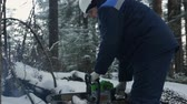 kask : Worker sawing with chainsaw in winter forest