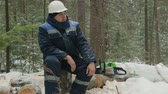 helma : Worker resting on log in winter forest