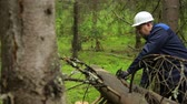kask : Man with chainsaw working in forest Wideo