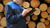 list : Worker with pad against pile of logs Stock Footage