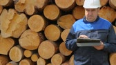 registrar : Worker with tablet PC against pile of logs Vídeos