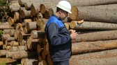 lista : Worker with tablet PC against pile of logs Stock Footage