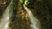 sombras : Waterfall in forest Stock Footage