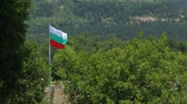 pólus : Bulgarian flag waving in the wind Stock mozgókép