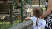 ocel : Little girl with mother in zoo