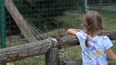 zoological : Little girl with mother in zoo