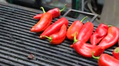 şenlik : Red pepper on grill