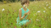 маргаритка : Little girl on field in summer day Стоковые видеозаписи