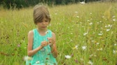 sedět : Little girl on field in summer day Dostupné videozáznamy