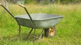 kruiwagen : Metal wheelbarrow on field