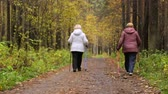 exercises : Women walking along a path in park