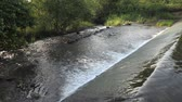 overflow pond : Water flowing over small river dam Stock Footage