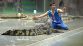 krokodyl : SRIRACHA, THAILAND - MARCH 1, 2018 : Daily crocodile show on chair at Sriracha Tiger Zoo, Thailand