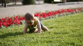 おむつ : Baby slowly crawling on meadow from. The little mill knows the world. Slow motion. 動画素材