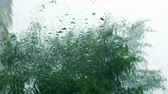patron abstracto : Raindrops on the window glass, buildings in the background. View from the window of the house, stormy weather, strong wind, heavy rain. Drops of rain on a window pane, buildings in background. Archivo de Video