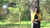 grávida : woman touching her pregnant belly Stock Footage