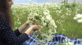 корона : Happy pregnant woman making camomile wreath. Стоковые видеозаписи