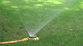 sprinkling : automatic watering system on green grass
