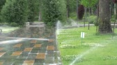 Garden Irrigation. Automatic sprinkler watering system for plants and lawn.