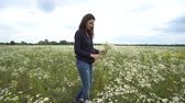blossoming : Pregnant woman picking camomile flowers. Stock Footage